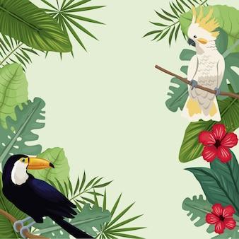 Tropische vogel hibiscus exotische palm