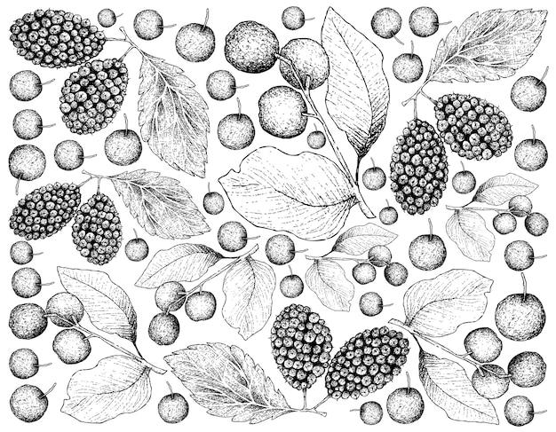 Tropische vruchten illustratie wallpaper van hand getrokken schets
