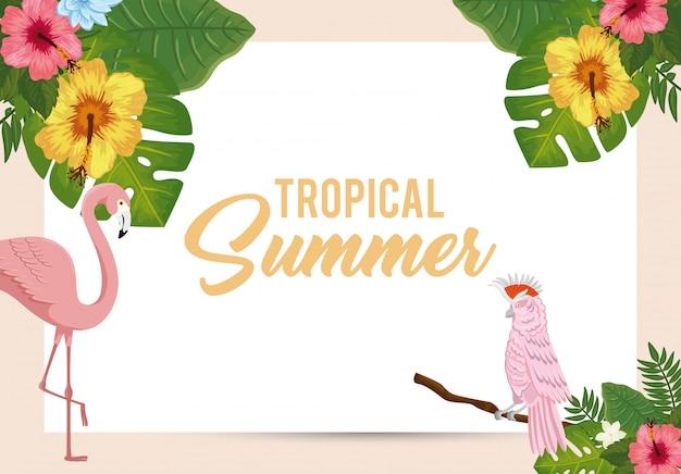 Tropische zomer illustratie met flamingo roze en papegaai