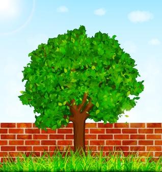 Tuinachtergrond met groene boom, gras en bakstenen muur