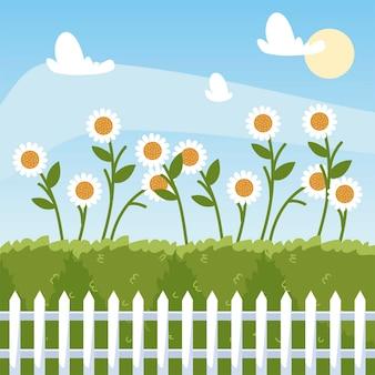 Tuinieren, bloemen madeliefjes struiken en hek cartoon afbeelding
