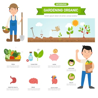 Tuinieren organische infographic, illustratie
