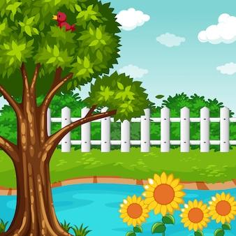 Tuinscène met vijver en bloemen