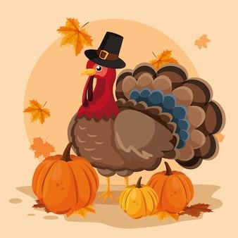 Turkije met pompoenen en hoeden pelgrim van thanksgiving day