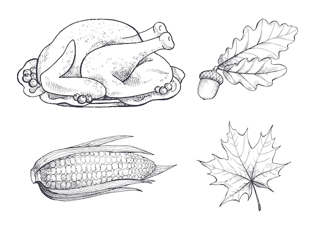 Turkije schotel en esdoorn bladeren schetsen set