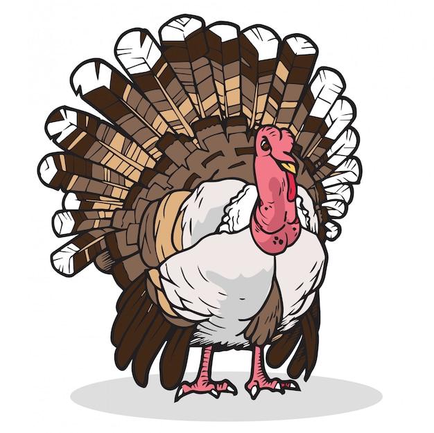 Turkije vectorillustratie
