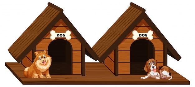 Twee houten hondenhokjes met honden