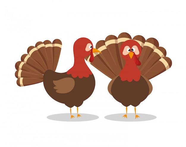 Twee kalkoen dierlijke thanksgiving