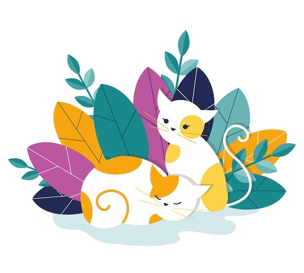 Twee katten