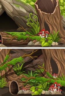 Twee scènes van bos met stammen en varen