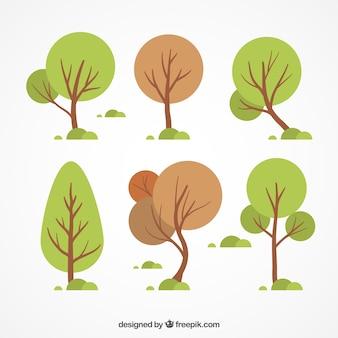 Types van de herfst bomen pakken
