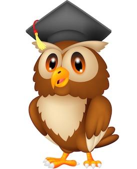 Uil draagt afstuderen cap
