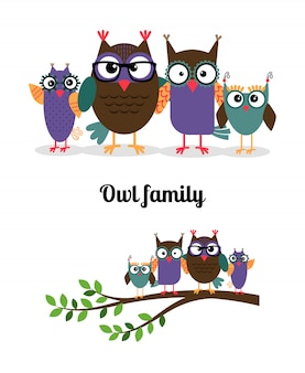 Uil familie