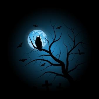 Uil halloween vector achtergrond búho