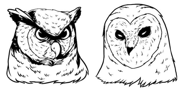Uil hoofd ontwerp illustratie