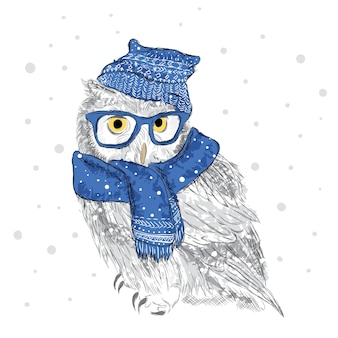 Uil in een muts en sjaal werden met de hand getekend. vogel kleding. bril.