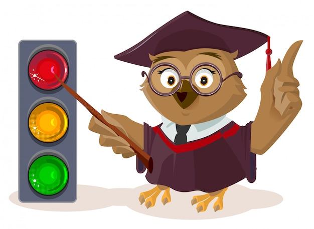 Uil leraar en stoplicht