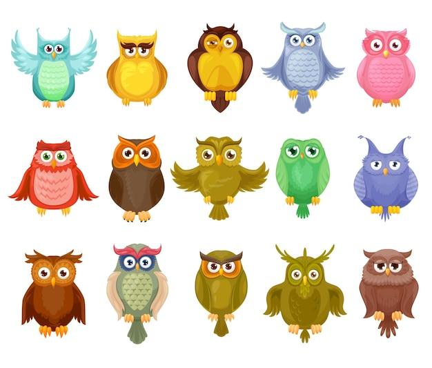 Uil vogels ontwerp van schattige cartoon owlets