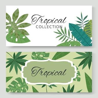 Uitstekende banners die met tropische groene bladeren en uitheemse plantenillustratie worden geplaatst. natuur uitnodiging. plantkunde. collectie natuurlijke tropische decoratieve banners.