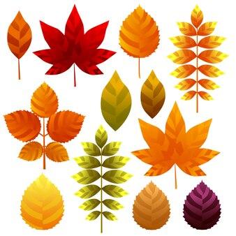 Unieke herfstbladeren pictogram element ingesteld