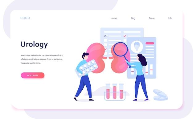 Urologie concept. idee van nier- en blaasbehandeling