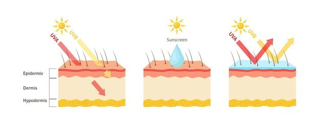 Uv-bescherming zonnebrandlotion beschermt de menselijke huid tegen uva-stralen