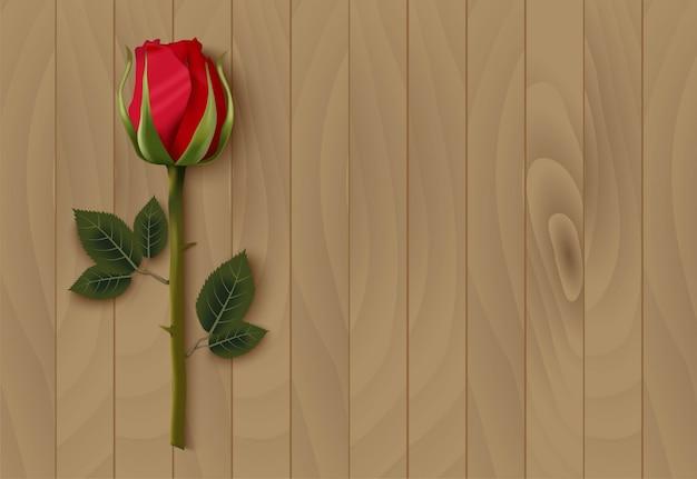 Valentijnsdag met rode roos en kopie ruimte