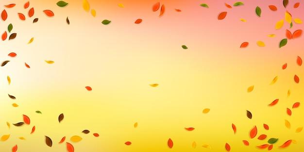 Vallende herfstbladeren. rode, gele, groene, bruine chaotische bladeren vliegen. vignet kleurrijk gebladerte op zeldzame witte achtergrond. mooie terug naar school verkoop.