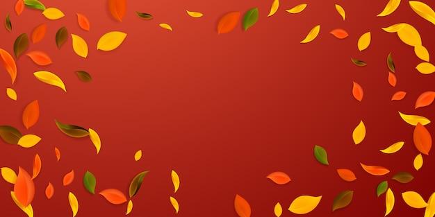 Vallende herfstbladeren. rode, gele, groene, bruine chaotische bladeren vliegen.
