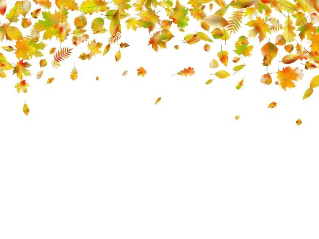 Vallende herfstbladeren.