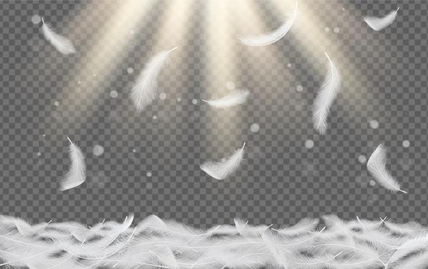 Vallende witte veren vector realistische illustratie
