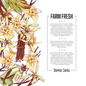 Vanilla spice flyer met ruimte voor tekst