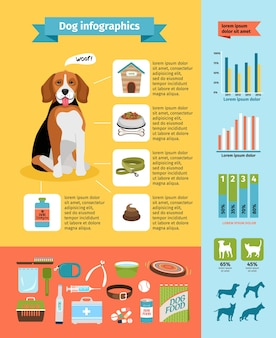 Vecto hondeninfographics, hondenvoer en kennel, dierenarts en verzorging, hondenhalsband en hondenshows