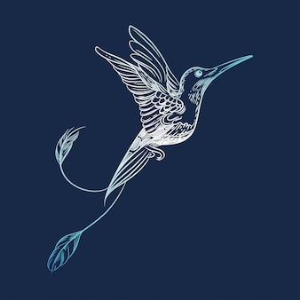Vector afbeelding van een kolibrie