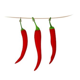 Vector afbeelding van een rode chili peper opgehangen om te drogen. pittige kruiden.