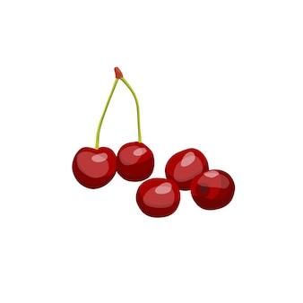Vector afbeelding van kersenbes die rijk is aan vitamine ab en c