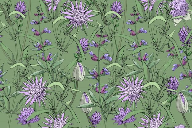 Vector bloemen naadloos patroon met purpere oesterinstallatie