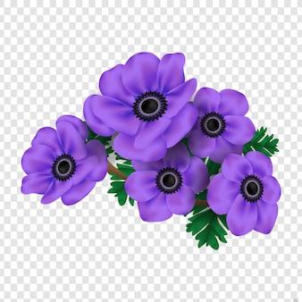 Vector bloemenontwerp: garden anemone fowers