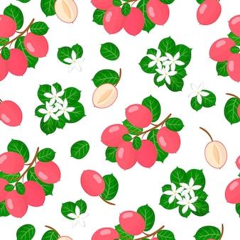 Vector cartoon naadloze patroon met carissa carandas of carunda exotisch fruit, bloemen en bladeren
