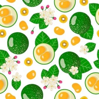 Vector cartoon naadloze patroon met caryocar brasiliense of pequi exotisch fruit, bloemen en bladeren