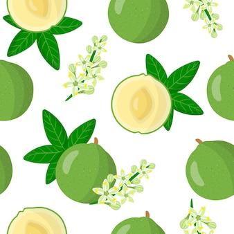 Vector cartoon naadloze patroon met casimiroa edulis of witte sapota exotische vruchten bloemen en blad op witte achtergrond