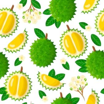 Vector cartoon naadloze patroon met durio of durian exotisch fruit, bloemen en bladeren