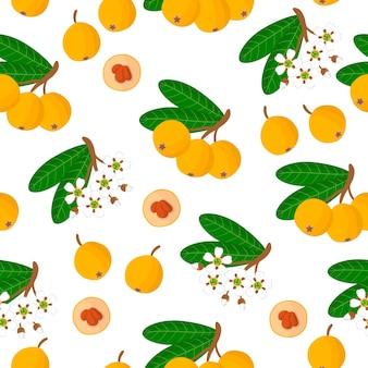Vector cartoon naadloze patroon met eriobotrya japonica of mispel exotische vruchten, bloemen en bladeren