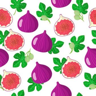 Vector cartoon naadloze patroon met ficus carica of vijgen exotisch fruit, bloemen en bladeren