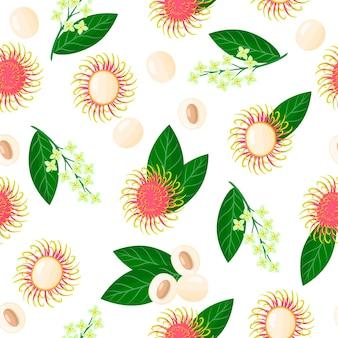Vector cartoon naadloze patroon met nephelium lappaceum of rambutan exotisch fruit, bloemen en blad op witte achtergrond