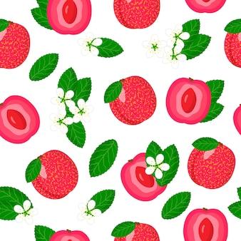 Vector cartoon naadloze patroon met plum apricot hybride of pluot exotisch fruit, bloemen en bladeren