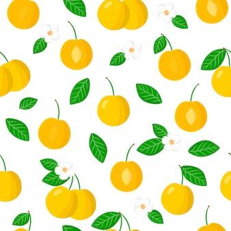 Vector cartoon naadloze patroon met prunus cerasifera of kersenpruim exotisch fruit, bloemen en bladeren