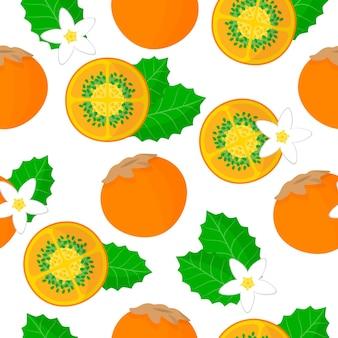 Vector cartoon naadloze patroon met solanum quitoense of naranjilla exotische vruchten, bloemen en blad op witte achtergrond