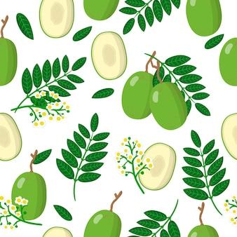 Vector cartoon naadloze patroon met spondias dulcis of ambarella exotische vruchten, bloemen en bladeren