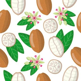Vector cartoon naadloze patroon met theobroma grandiflorum of cupuacu exotische vruchten bloem en blad op witte achtergrond